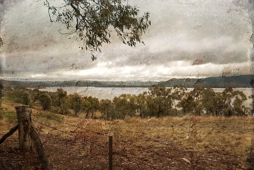 Lake Burrendong by garts