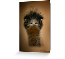 Who Are You Looking At Greeting Card