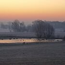 A cold Suffolk morning by Christopher Cullen