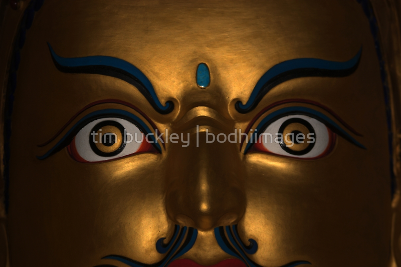 open eyes. padmasambhava statue, northern india by tim buckley | bodhiimages