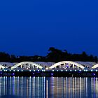 Napier Bridge by Arvind Balaraman