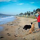 Doggies by Melinda Kerr