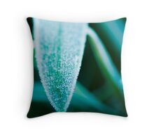 Baby its cold outside ... Throw Pillow