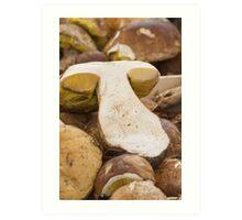 mushroom at market Art Print