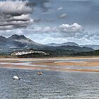 Snowdonia . by Irene  Burdell