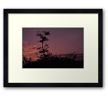 Dawn at Bunche Beach, As Is  Framed Print