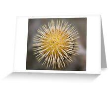 Radial Blur Greeting Card