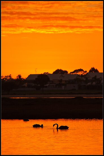 Sunrise over Mandurah Estuary by Peter Rattigan