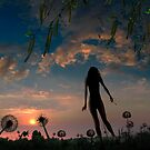 Silhouettes by Igor Zenin