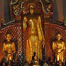 He's a big Buddha. by newcastlepablo