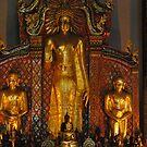 Buddha. by newcastlepablo