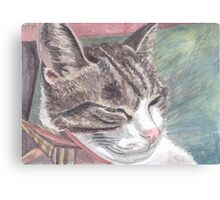 Maxfacto sleeping Canvas Print