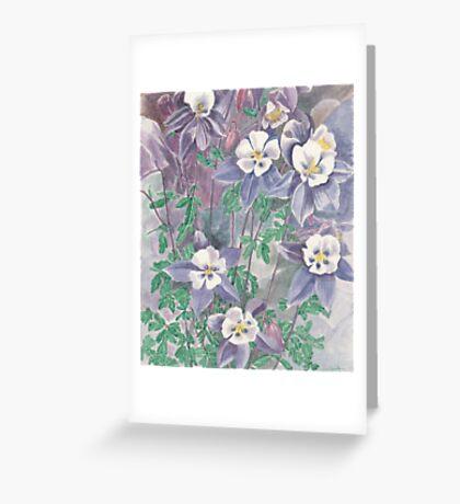 Flowers of Aquilegia Greeting Card
