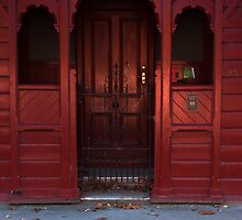 Red Door and Autumn Leaves by NolsNZ