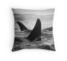Orca Crossing - Tysfjord, Norway Throw Pillow