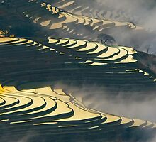 Yuanyang Terraced rice field 1 by jasonksleung