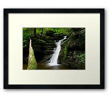 Buttermilk Waterfalls Framed Print