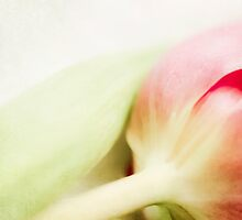 """""""pastell dreams with tulips"""" Part4 by Katy Opitz"""
