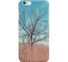 Countryside in Beijing iPhone Case/Skin