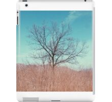 Countryside in Beijing iPad Case/Skin
