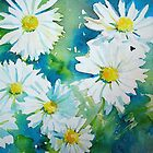 Wild Daisies by Ruth S Harris