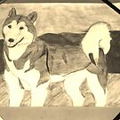 Sepia Husky Drawing by Bearie23