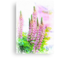 Lupin Digital Painting Canvas Print