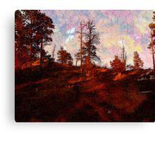 Wild west Canvas Print