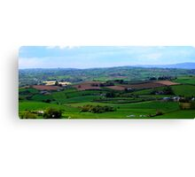 ...and there's forty shades of green! Canvas Print