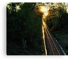 gold on track Canvas Print