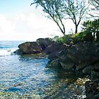 20110410PJCarribean-326 by Patrick Jerina