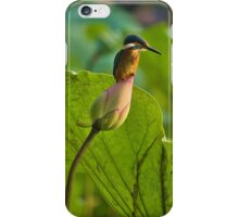 Kingfisher & Lotus iPhone Case/Skin