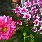 pink bouquet by lensbaby