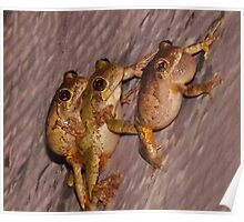 Piggy Back (smile) and Leap Frog Poster
