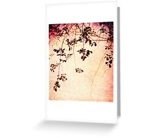 Leaves at Sunrise Greeting Card