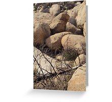 Fallen Tree At The Pinnacles Greeting Card