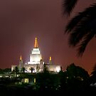 Oakland Temple by the Palm Tree 20x24 by Ken Fortie