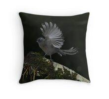 Fantail dark morph New Zealand Throw Pillow