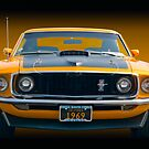 1969 Mustang Mach 1 Fastback - Front View by Timothy Meissen