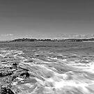 Bora Reef by Patrick Reid