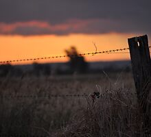 Country Sunset by Larissa Kerkow