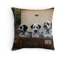 Pups in a Case Throw Pillow