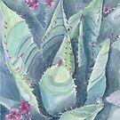 Succulent plant by acquart