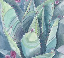 Succulent plant by acquart