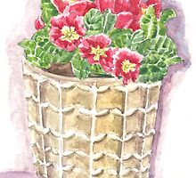Jar primrose by acquart