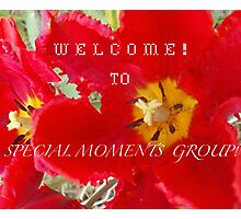 EXAMPLE BANNER FOR SPECIAL MOMENTS GROUP BANNER CHALLENGE Photographic Print