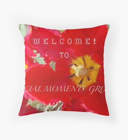 EXAMPLE BANNER FOR SPECIAL MOMENTS GROUP BANNER CHALLENGE Throw Pillow