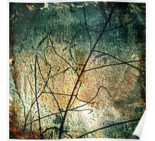Branched Poster