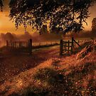 Autumn Sunrise by GaryMcParland