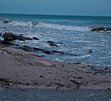 Gaviota State Beach by Renee D. Miranda